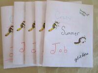 Limited Edition Collectible Outsider Pop Art Artist Zine - Crazy Summer Job