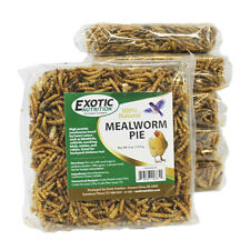 Mealworm & Sunflower Pie - Healthy Insect Treat for Wild Birds