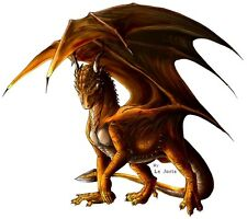 Dragons # 11 - 8 x 10 Tee Shirt Iron On Transfer
