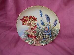 Border Fine Arts Flower Fairy plate THE POLYANTHUS Fairy