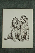 Irish Setter Pups Pen & Ink Stationary Cards, Note Cards, Greeting Cards. 10 ct.