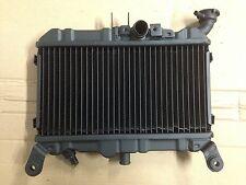 Honda NS400R 85-87 Radiator Recore Service