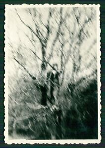 WOMAN CLIMBING in TREE ABSTRACT BLURRED Photo