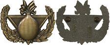 Brevet, insigne de Démineur, finition bronze, dos grenu plat, A.Bertrand, (3098)