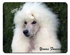 White Poodle Dog 'Yours Forever' Computer Mouse Mat Christmas Gift Id, AD-POD5yM