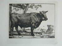 Kunstblatt Paulus Potter Rinder Stier 1650 XIX