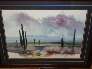 Southwest Desert Sky Cactus Scene Landscape Adin Shade
