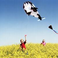 5D Neu Wal Einleiner Drachen Flugdrachen Windspiele Kite Spielzeug für Outdoor