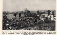 12 LAGUIOLE ENVIRON L ESTIVE PARC A VAACHES PATURAGE AUBRAC IMAGE 1948 PRINT