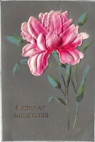 Birthday Greetings Embossed Flower Antique Postcard Unposted Writing