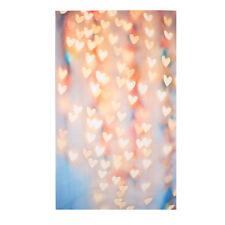 Pro Vinyl Wedding Party Heart Photography Backdrop Photo Background Vinyl 3x5ft