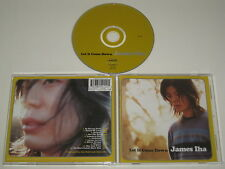 JAMES IHA/LET IT COME DOWN(VIRGIN 7243 8 45411 2 5) CD ALBUM
