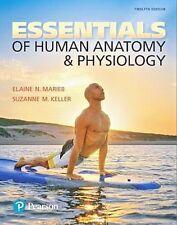 Essentials of Human Anatomy & Physiology (12th US International Edition) *NEW