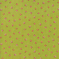Moda Fabric Lucky Day by MoMo  | Ladybugs | 33294 14