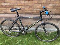 schwinn paramount bicycle PDG 30 series