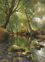 Forest Stream Landscape Oil painting Giclee Art Printed on canvas L2538