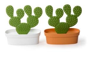 Schmuckhalter Kaktus Qualy Caccessories Tray Ablage Aufhänger Schmuckkasten