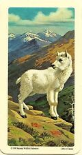RED ROSE TEA CARD, SERIES: ANIMALS AND THEIR YOUNG, MOUNTAIN GOAT