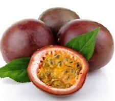 25 Seeds Thai Passion Flower Purple Granadilla, Passiflora Edulis Fruit Vine