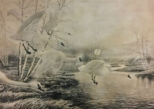 Rex Brasher Bird Print Moonlite Haven Tundra Swans Litho Plate Pencil Sign 03477