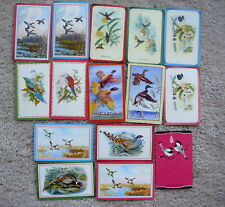 15 VINTAGE SWAP PLAYING CARDS BLANK BACKS -  GAME BIRDS SONG BIRDS HUMMING BIRDS