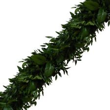Italian Ruscus Garland / Grower Direct / Quality Guaranteed