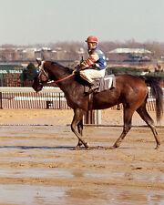 Triple Crown Jockey RON TURCOTTE Glossy 8x10 Photo Belmont Stakes Print Poster