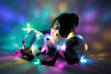 Leuchthalsband LEUCHTIE Premium für Hunde bicolor/zweifarbig - LED Halsband