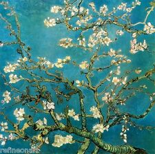 "Handmade Oil Painting repro Van Gogh Almond Branches in Bloom 40""x40"""