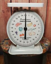 Vintage American Family kitchen counter top white scale weighs 25 lbs. Excellent