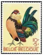 Timbre Oiseaux Belgique 1513 ** lot 29066