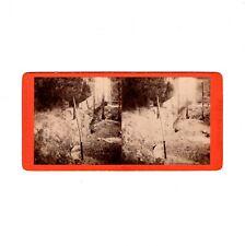 Hermann Krone Stereofotografie Sächsische Schweiz / Krumme Caroline - um 1870