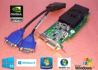 HP Compaq Elite SFF 8000 8100 8200 8300 HDMI / Dual VGA Video Graphics Card