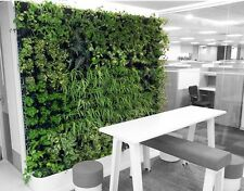 Grow Fresh Healthy Salads & Herbs on Living Wall in Rigid PP Boxes 2 Frames Set