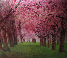 3D & Aminated Lenticular Poster - SEASONS - Trees - 12x16 Print - 3 images in 1