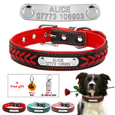 Padded Braided Personalized Pet Dog Collars Free Bell & ID Address Tube XS S M L