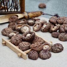 Organic Natural TopGrade Fungus Shiitake Grown Mushrooms Premium Dried 1kg