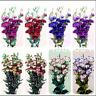 100 PCS Seeds Eustoma Bonsai Perennial Plants Flowers Lisianthus Decoration 2021