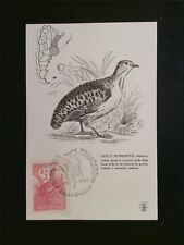ARGENTINA MK 1960 BIRDS PERDIZ VÖGEL MAXIMUMKARTE CARTE MAXIMUM CARD MC c7676