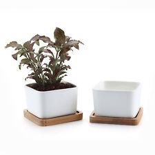 "2 pcs 3.5"" White Square Ceramic Pot Plant Flower Succulent Planter With Tray"