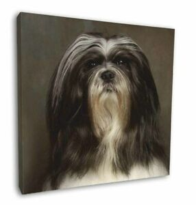 """Lhasa Apso Dog 12""""x12"""" Canvas Wall Art Picture Print, AD-LAP1-C12"""