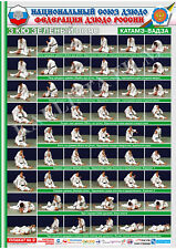 Posters JUDO. Green  belt  1 poster.The technique of judo.KATAME-WAZA.