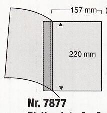 SAFE Compact-Spezialblätter passend für Compact-Alben 5 Stück Art.-Nr. 7877