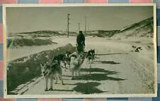 Photo Featuring Dogsledding Team  11 1/4 by 7 Inches