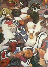 Quackers Galore - Ducks -Blank Greetings Card-Any Occasion By Animal Awareness