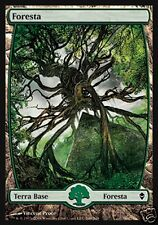 MAGIC FORESTA - FOREST 249 ZENDIKAR FULL ART