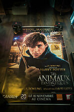 FANTASTIC BEASTS WHERE TO FIND THEM C 4x6 ft Shelter D/S Movie Poster Original