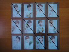 EXO Nature Republic Ver.B photo card Official Suho Chen Luhan