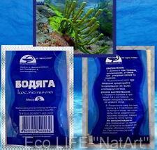 Spongilla powder cosmetic,Badyaga-5g, Бадяга Бодяга косметическая!
