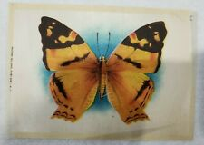 New listing Vintage Tobacco Advertising Silk with Butterfly Nebo Cigarettes 1900's 5 x 7
